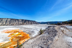 Landscape near Mammoth Hot Springs Royalty Free Stock Image