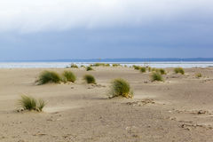 Landscape near the mouth of the Vistula River to the Baltic Sea, Poland Stock Image