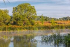 Landscape near the Myhiia River. Ukraine. Landscape on the Mihia River. The river is surrounded by trees and herbs. Reeds grow in the river. Ukraine, Pervomaisk royalty free stock images