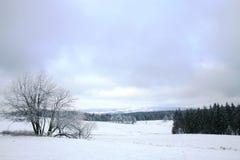 Landscape near Pasterka village in Poland Royalty Free Stock Photography