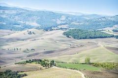 Landscape near Pienza Stock Image