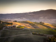 Landscape near Pienza Royalty Free Stock Image