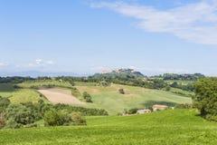 Landscape near Pienza Tuscany Stock Photography