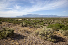 Landscape near Safford, Arizona Stock Photos