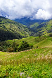 Landscape near Salento, Colombia Royalty Free Stock Images