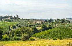 Landscape near San Gimignano (Tuscany) Stock Image