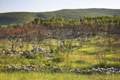 Landscape near Studenci. Bosnia and Herzegovina Royalty Free Stock Photos