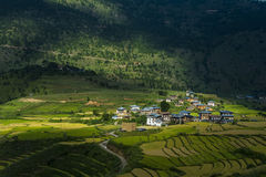 Landscape of near thimphu bhutan Stock Photo