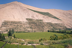 Landscape near to Pisco Elqui Royalty Free Stock Photos