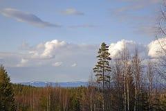 Landscape near Tomteland. Dalarna. Sweden Royalty Free Stock Photo