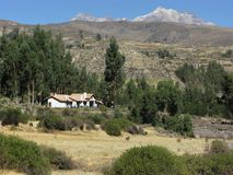 Landscape near the town of Yanque, Peru. Landscape near the town of Yanque close to the Colca Canyon, with a house and a mountain view, Peru royalty free stock photo