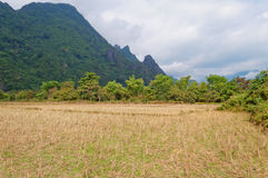 Landscape. Vang Vieng. Laos. Royalty Free Stock Photos