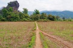 Landscape. Vang Vieng. Laos. Stock Image