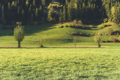 Landscape near Vipiteno - Sterzing Stock Photo
