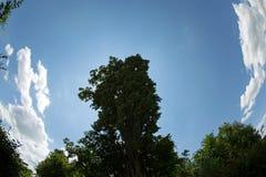 Landscape. Near zurich with cloud Stock Photos