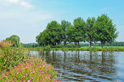 Landscape in Netherlands. Typical landscape in Netherlands in clear day Royalty Free Stock Images