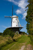 Landscape in Netherlands. Royalty Free Stock Photography