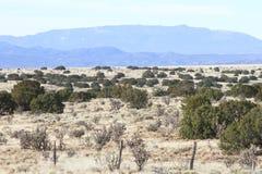 New Mexico High Desert Near Santa Fe Stock Photo