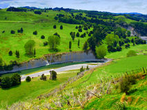 Landscape in New Zealand Royalty Free Stock Photos