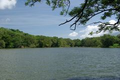 Landscape in Nicaragua Stock Image