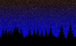 Landscape, night forest. Landscape - spruce forest a starry night Stock Photo
