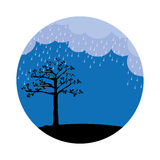 Landscape night with rain and tree Royalty Free Stock Photo