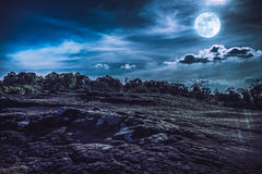 Landscape of night sky with full moon, serenity nature backgrou. Landscape of night sky with cloudy above wilderness area in forest. Beautiful bright full moon royalty free stock photography