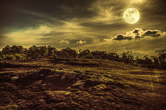 Landscape of night sky with full moon,  serenity nature backgrou. Landscape of night sky with cloudy above wilderness area in forest. Beautiful bright full moon Stock Photos