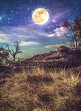 Landscape of night sky with many stars above wilderness. Vintage Royalty Free Stock Photography
