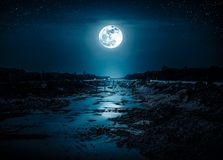 Landscape of night sky with many stars and bright full moon. stock images