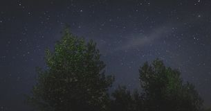 Landscape of the night sky silhouettes of trees stock images