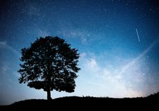 Landscape with night starry sky and silhouette of tree on the hill. Milky way with lonely tree, falling stars. Stock Images