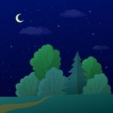 Landscape, night summer forest Royalty Free Stock Photo
