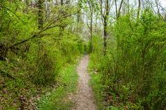 Landscape of Nixon Park in Loganville, Pennsylvania.  Royalty Free Stock Photo