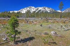 Landscape of North California Stock Image