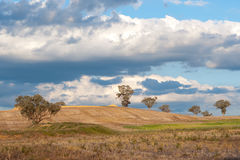 Landscape north of Canberra, Australia Royalty Free Stock Image