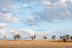 Landscape north of Canberra, Australia Royalty Free Stock Photo