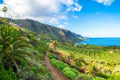 Landscape with North Tenerife coast. Canary island, Spain royalty free stock photos