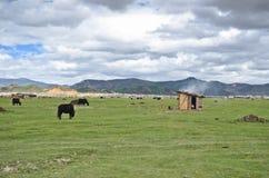 Landscape of north Yunnan, China Royalty Free Stock Photography