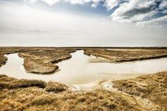 Landscape Northern Germany Royalty Free Stock Photography