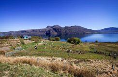 Landscape of the north-west Scotland Stock Images