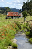 Landscape of Northland New Zealand. Royalty Free Stock Images