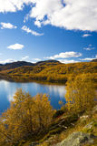 Landscape of Norway. Landscape of Southern Vestlandet, Norway Stock Photography