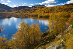 Landscape, Norway. Landscape of Southern Vestlandet, Norway Royalty Free Stock Photo