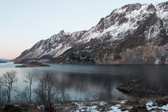 Landscape in Norway. Bay in the Lofoten Islands - during the polar night - Norway Stock Photos