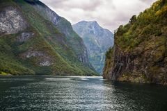 Landscape in Norway. Landscape with Naeroyfjord and high mountains in Norway Royalty Free Stock Image