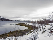 Landscape in Norway under snow Stock Photography