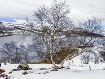 Landscape in Norway under snow Stock Photos
