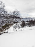 Landscape in Norway under snow Royalty Free Stock Photo