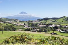 Landscape Of Faial, Azores Stock Images